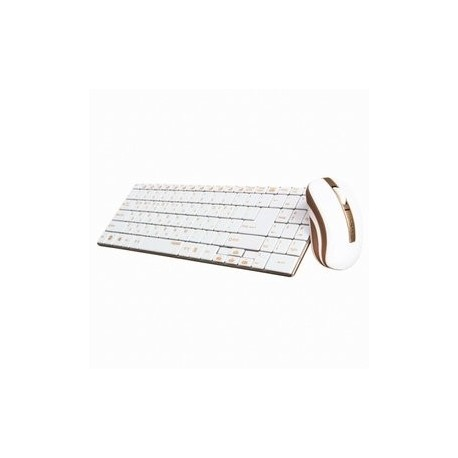 Rapoo 9160 Wireless Keyboard and Mouse